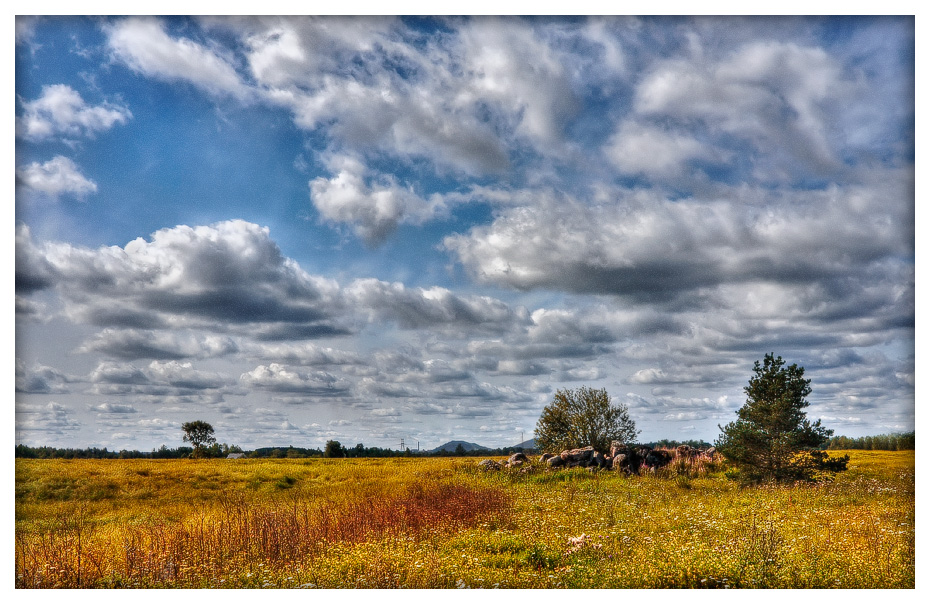 clouds bringing autumn author mikhaylov andrey