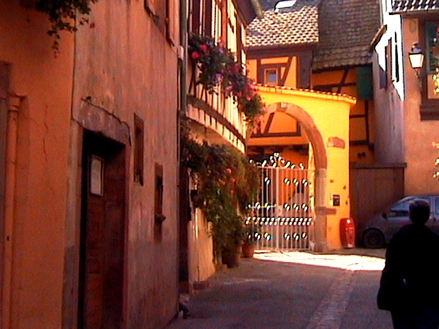 ribeauville alsace author womack john