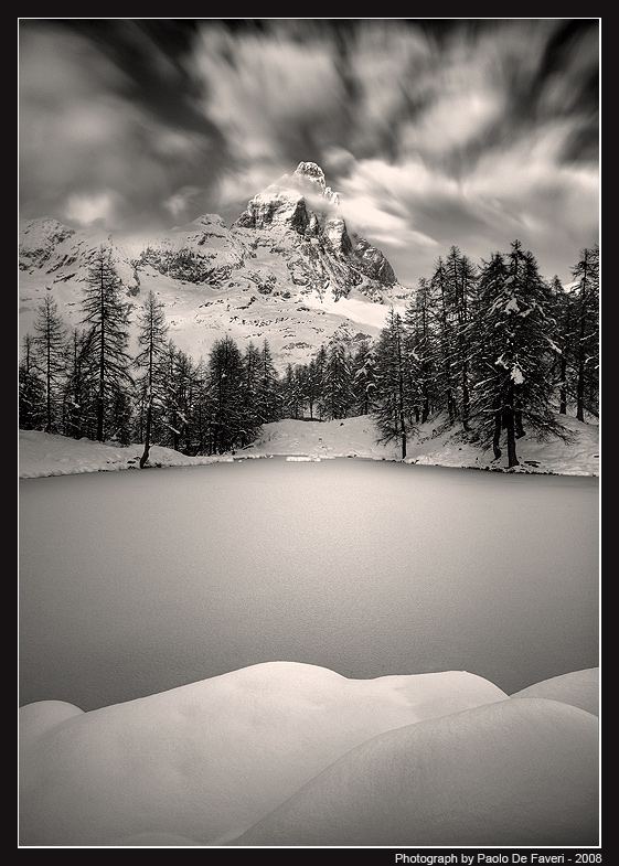 and suddenly winter bw version author de faveri p paolo