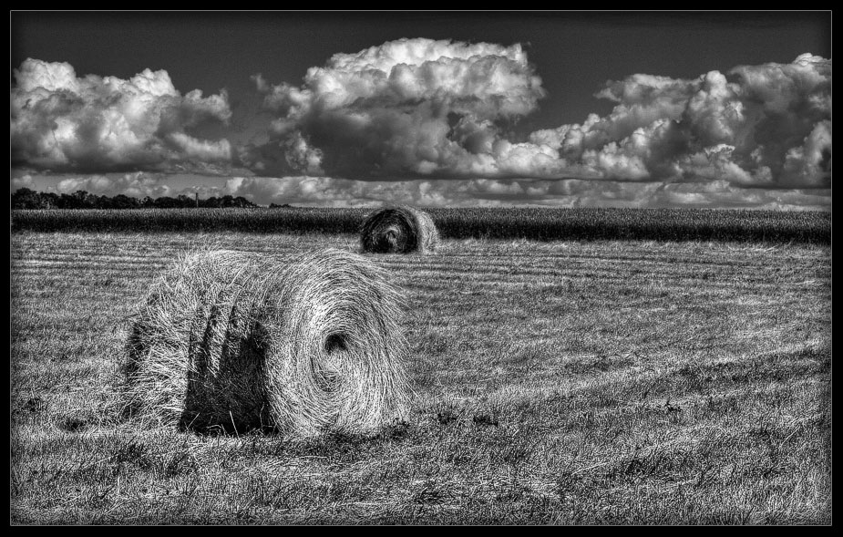 field hay and clouds author mikhaylov andrey