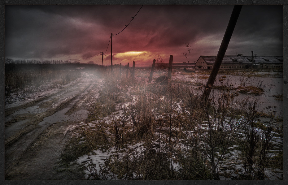 road to a farm author mikhaylov andrey