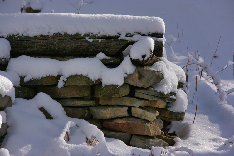 wood stone and snow old root celler author sava gregory verena