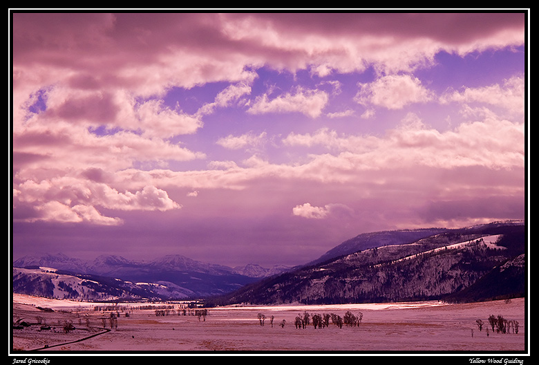 lamar valley blue and gold filter author gricoski gricoskie jared