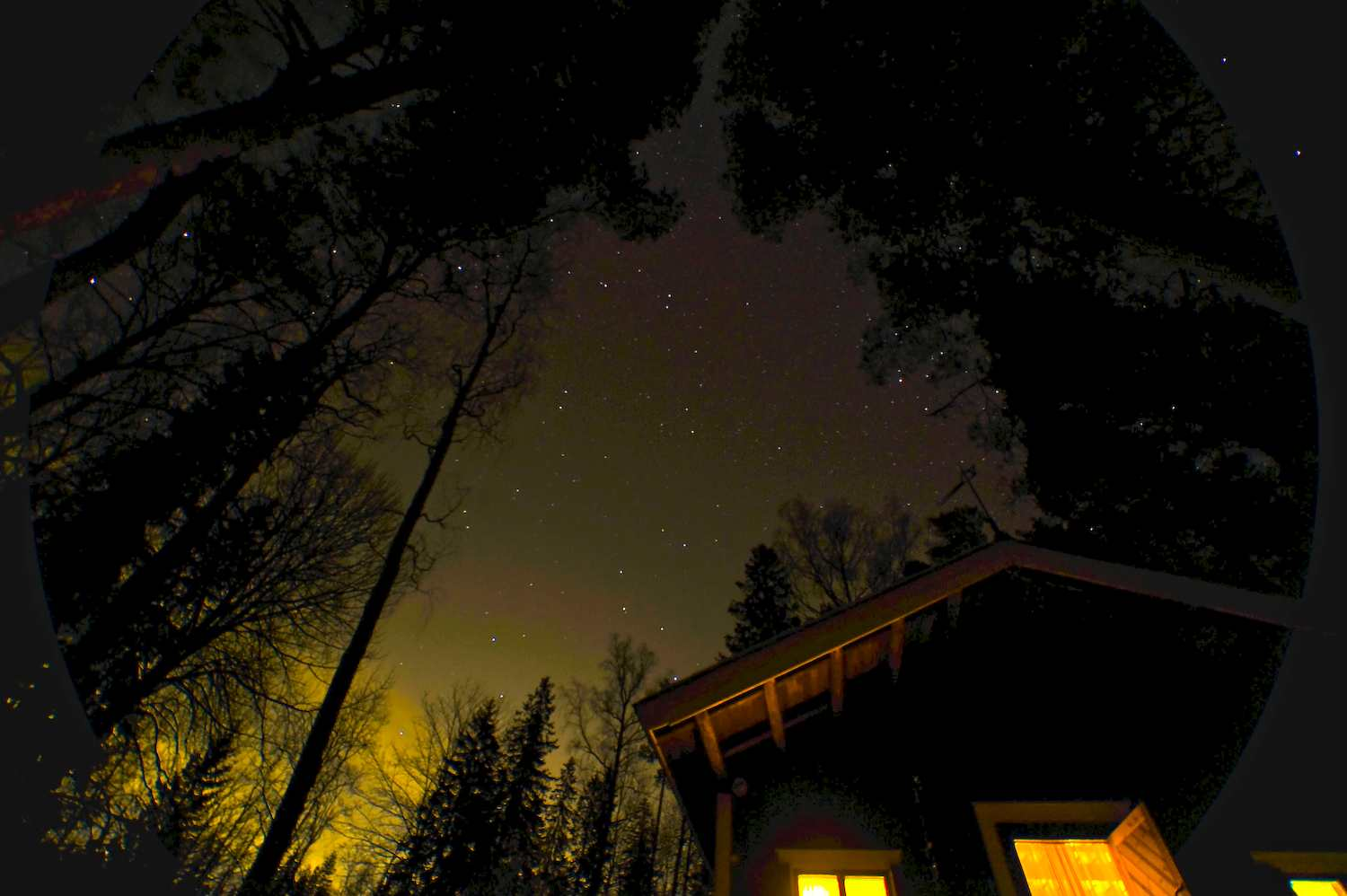 stars above the cottage author soini hannu
