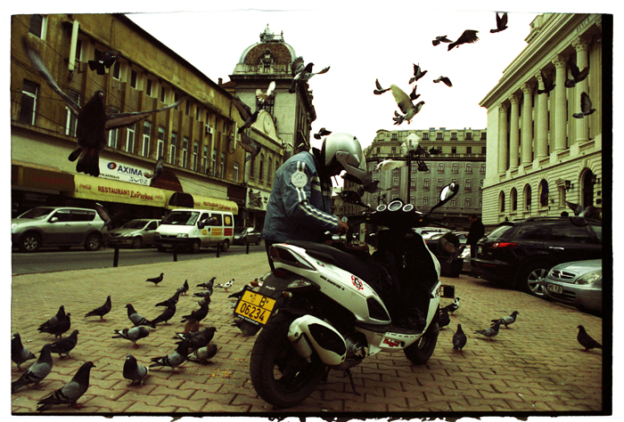 a man feeding pigeons in bucharest author ursu m mihail
