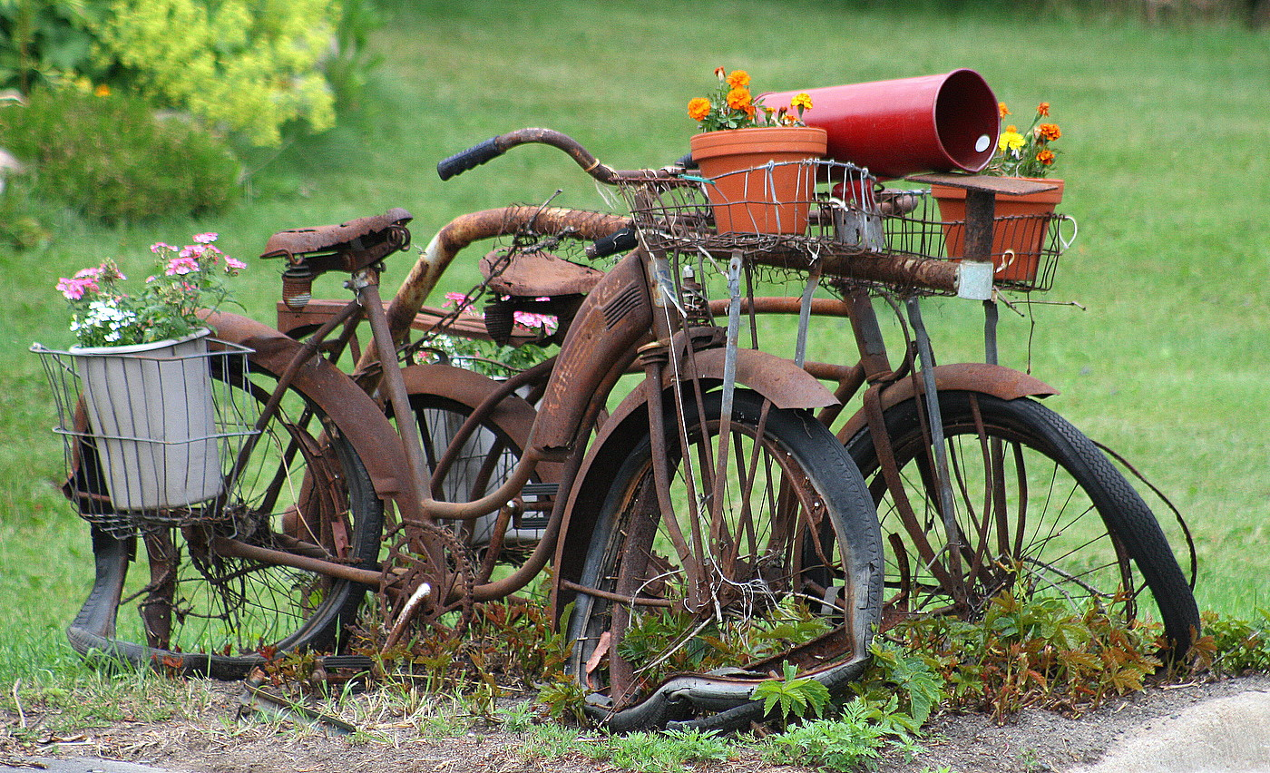 old bikes flowers at the mail box author pluskwik paul