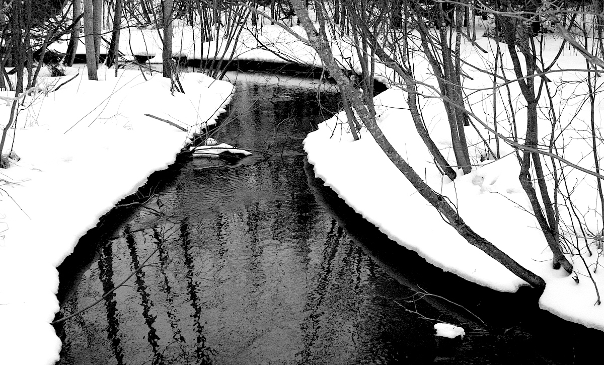 winter creek on a cloudy day author pluskwik paul