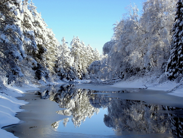 winter reflections after the storm author pluskwi pluskwik paul