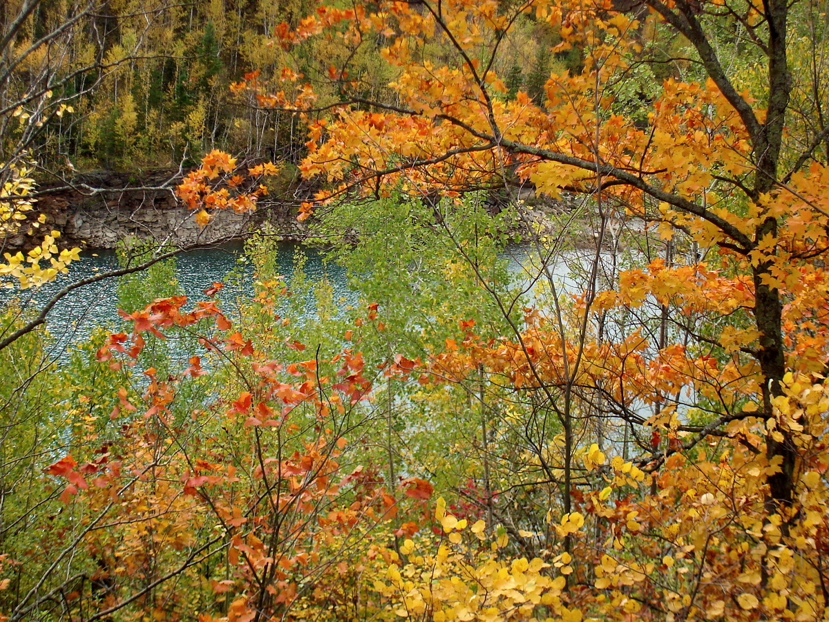lake view through the fall colors author pluskwik paul