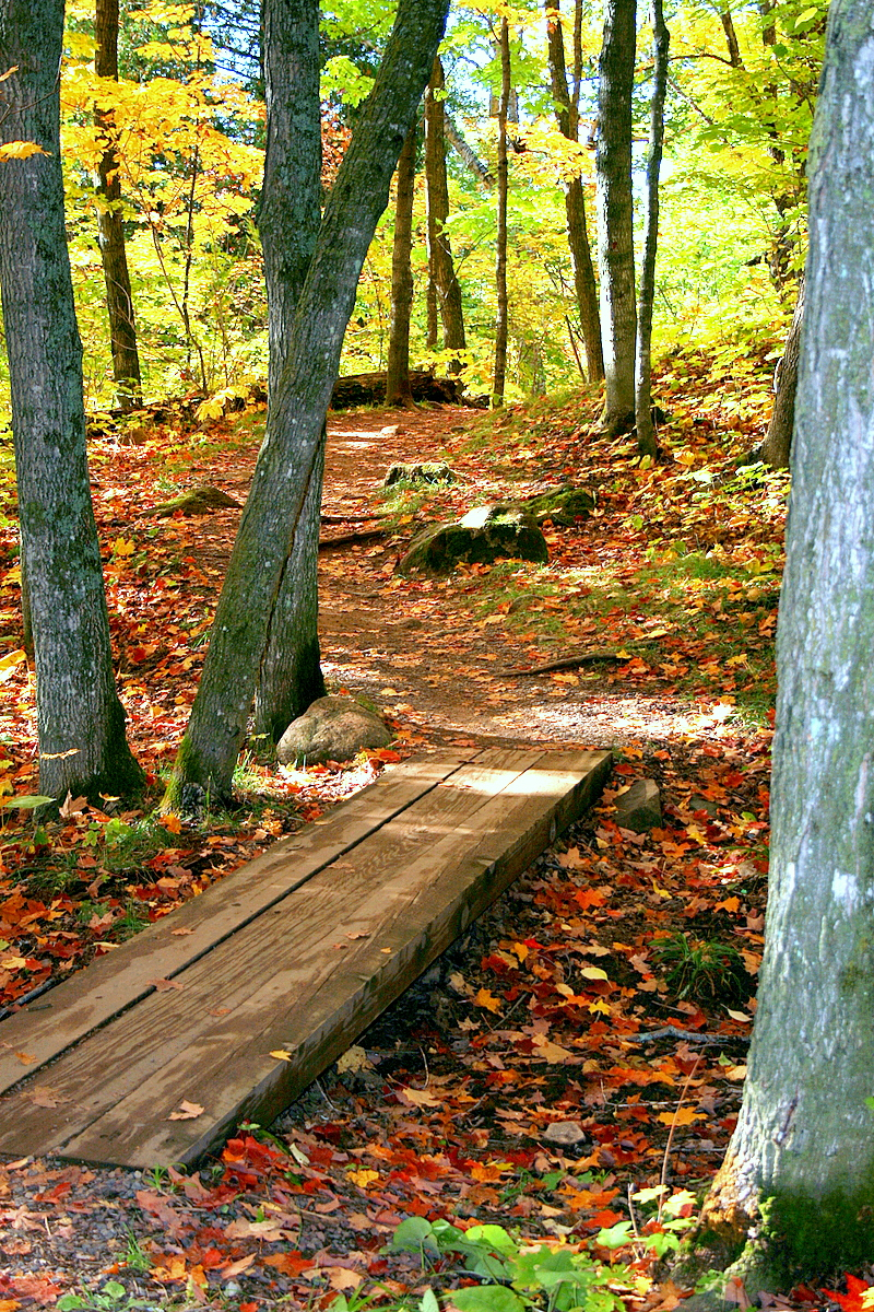 oberg mountain walking path in the fall author pl pluskwik paul
