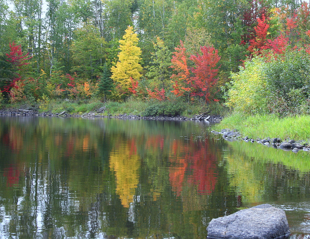 fall colors begin to reflect in a lake author pl pluskwik paul