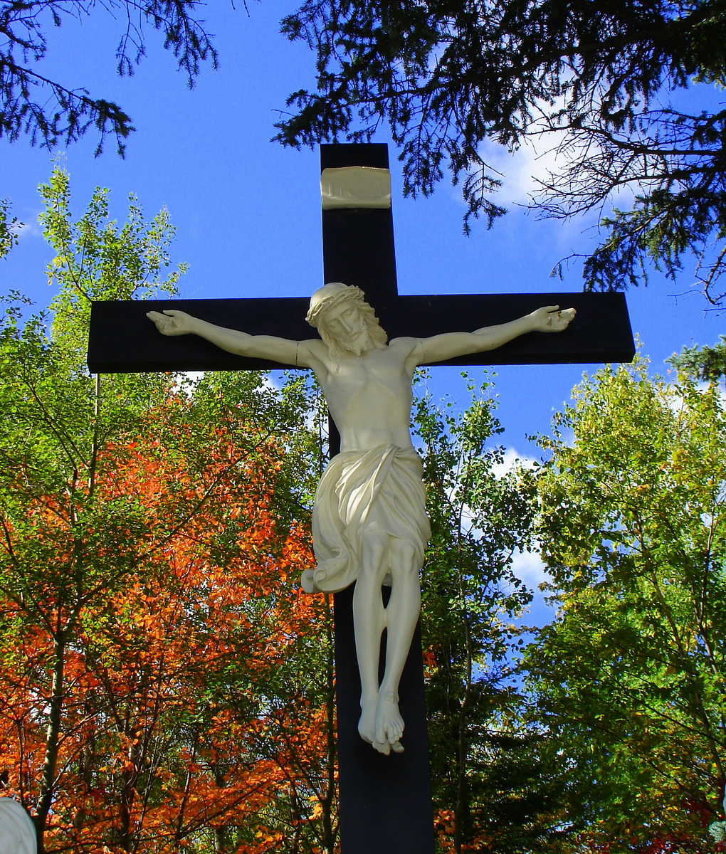 nature and the cross author pluskwik paul