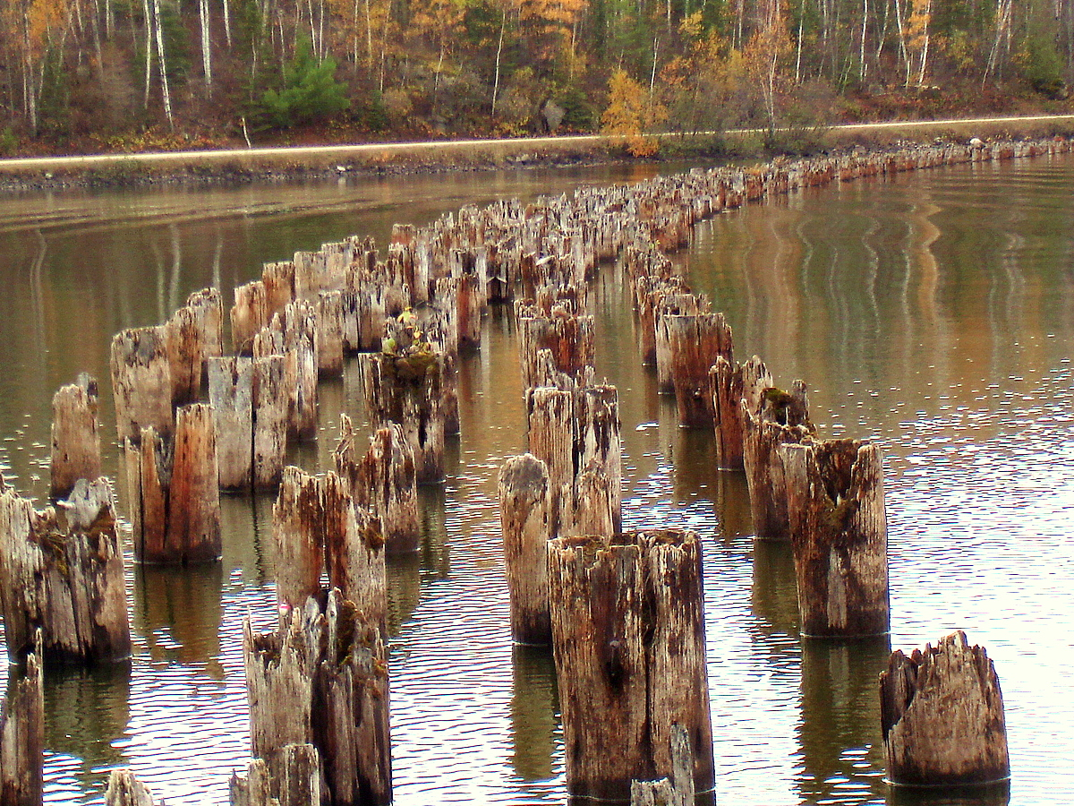 old bridge pilings accross a lake author pluskwik paul