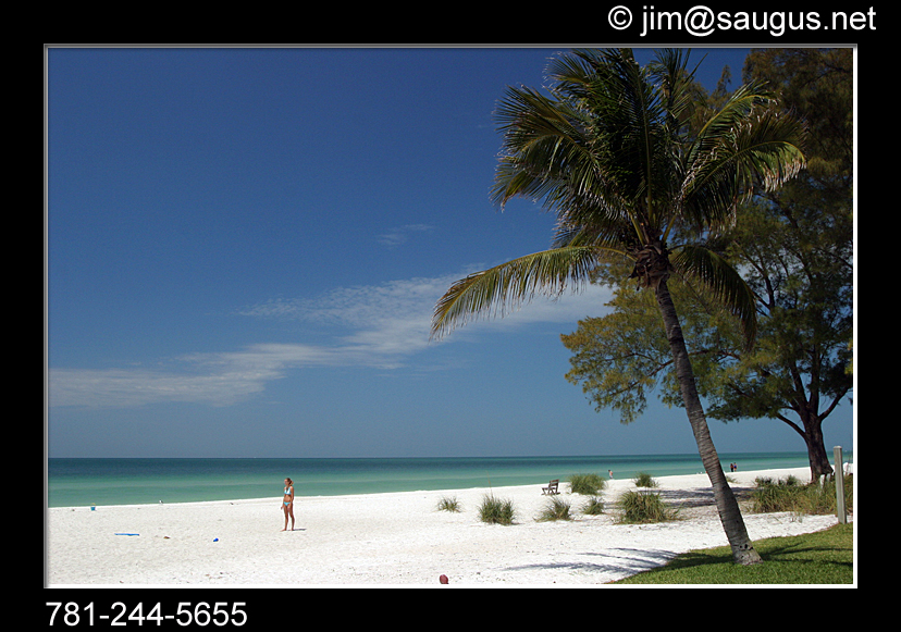 anna maria island florida stock photos author har harrington usa massachusetts j