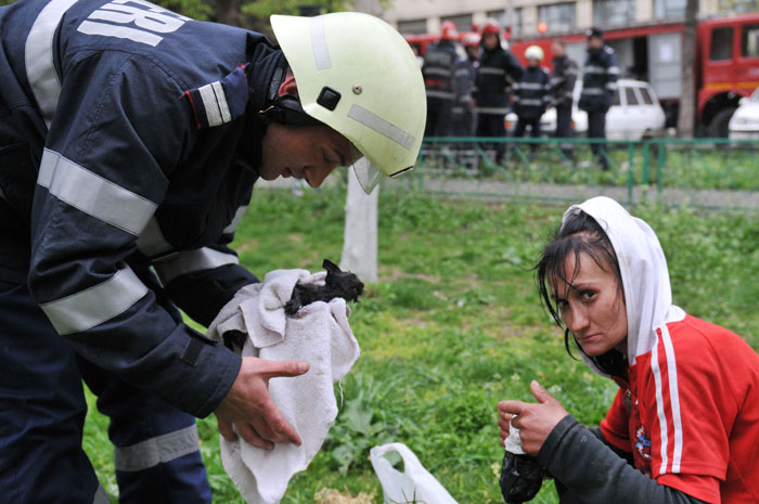 a firefighter is drying kitten that was rescued ursu mihail