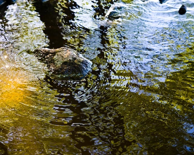 watermotion reflections author soini hannu