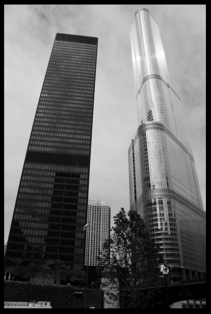 two towers author reyzin lev
