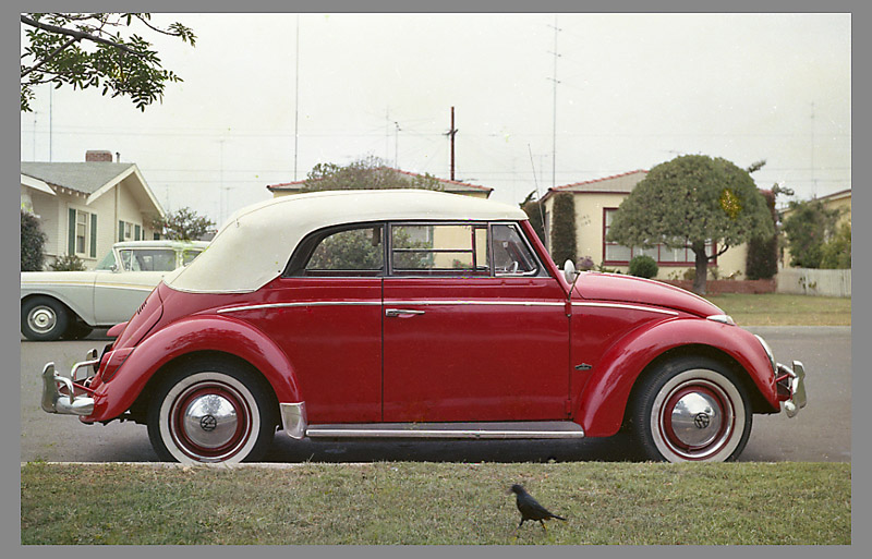 our vw convertible new vinyltop and taillights siegel honolulu gerry