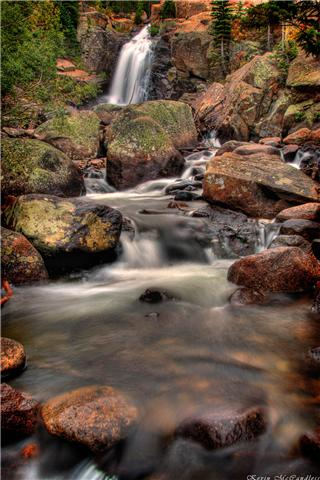 albert falls by kevin mccandless author gricoskie jared