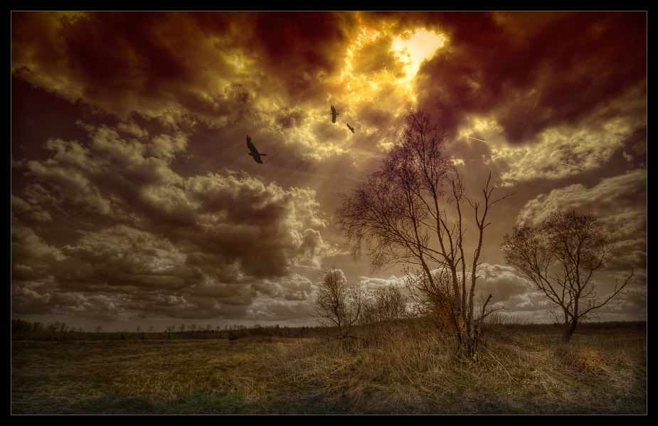 beginning of the end author mikhaylov andrey