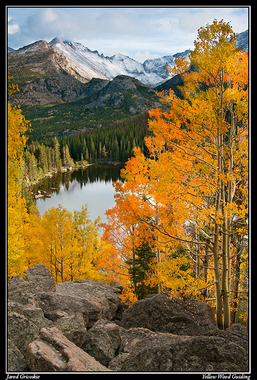 bear lake fall author gricoskie jared