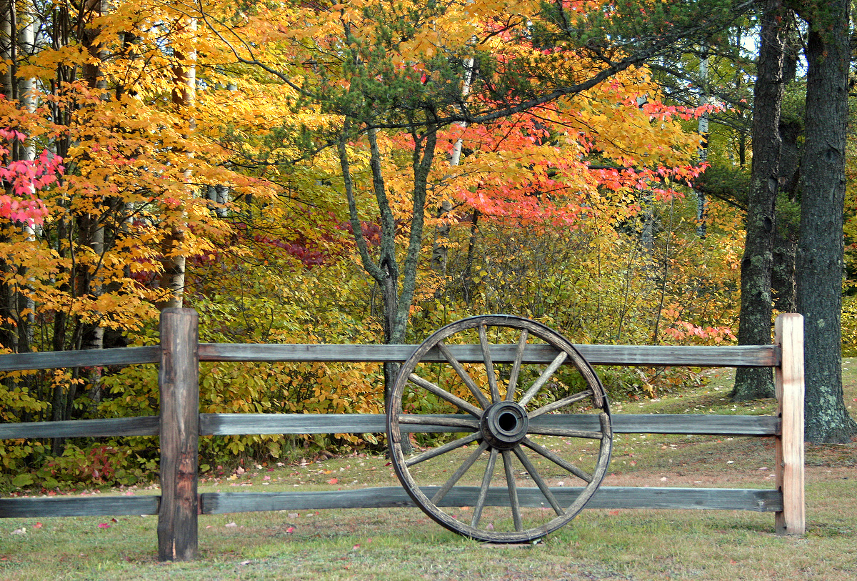 fall color behind the old wagon wheel author plus pluskwik paul